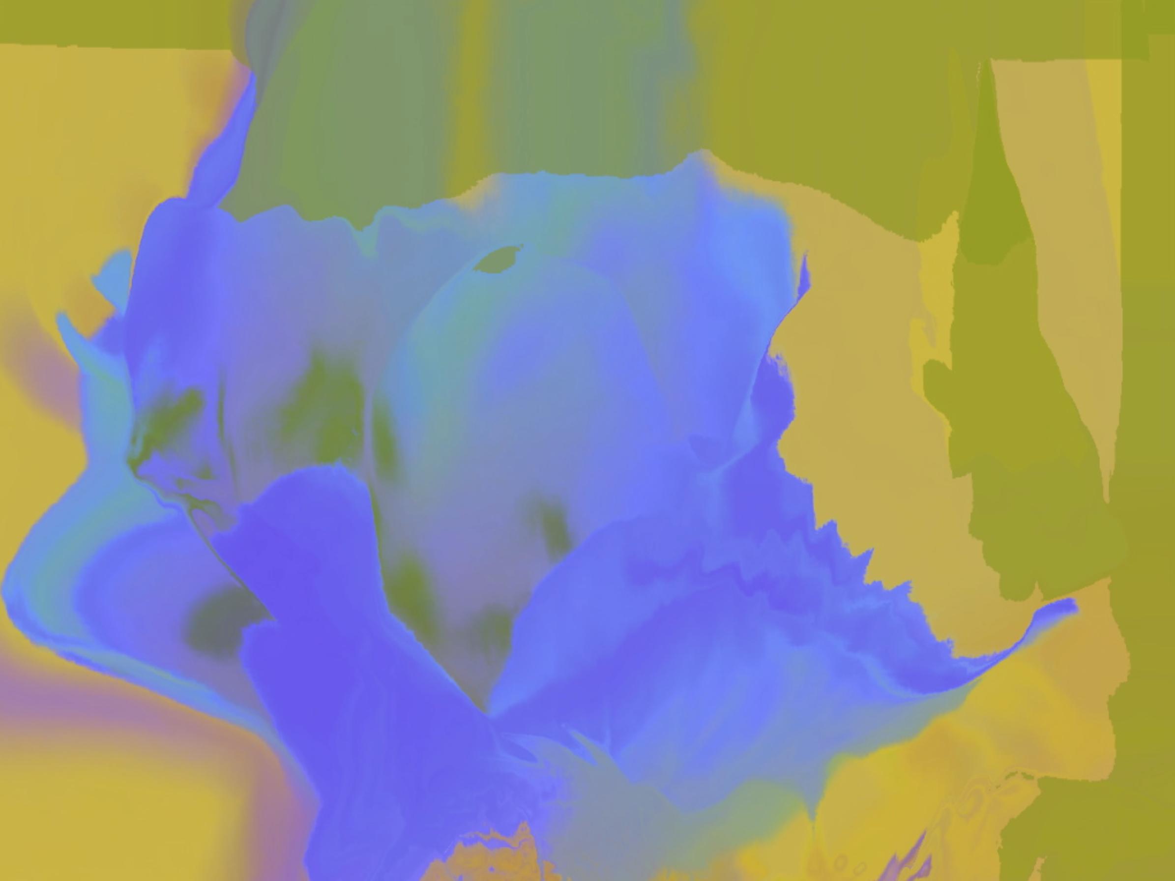 Schermata 2017-06-16 alle 18.57.15